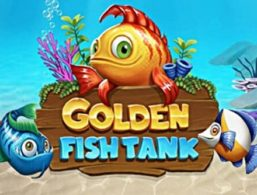 Golden Fish Tank – Yggdrasil