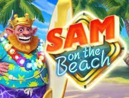Sam on the Beach – ELK