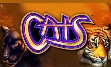 Slot online Cats di IGT - Gioca gratuitamente e leggi la recensione.