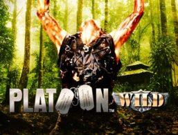 Platoon Wild – iSoftbet