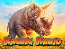 Raging Rhino – WMS